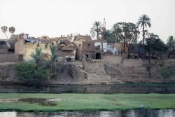 Rives du Nil (Egypte)